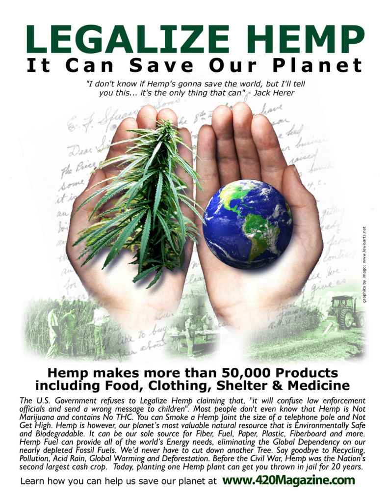 hemp vs the world essay