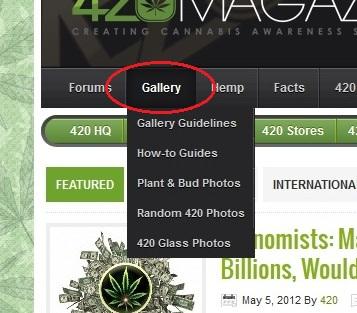 Gallery_Tutorial_1.jpg