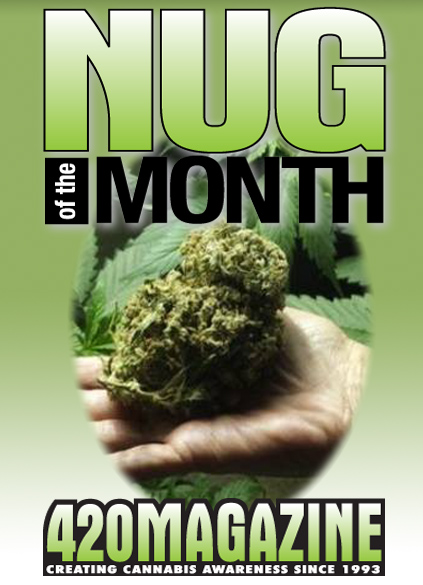 Nug-Month_new.jpg