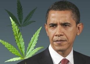 ObamaonMedicalMarijuana.jpg