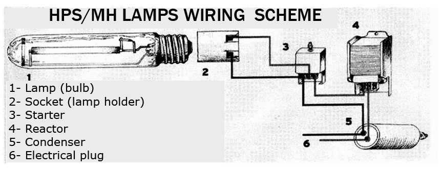 Utilitech T8 Led Wiring Diagram furthermore All in addition Fluorescent Ballast Change furthermore Leviton Photoelectric Switch Wiring Diagram in addition Hps 1000w Ballast Venture 58053. on philips ballast wiring diagram