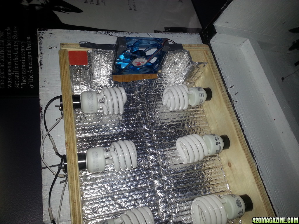 20130517_150445 cfl grow box upgrading as i go all input welcomed! CFL Bulb Diagram Easy at webbmarketing.co