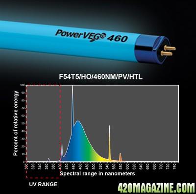 end-power-veg-460.jpg