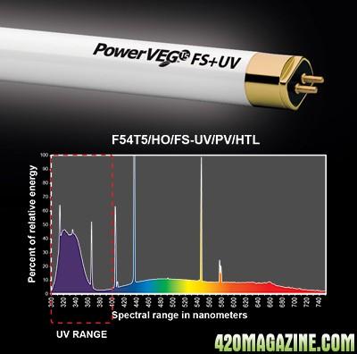 end-power-veg-fs-uv.jpg