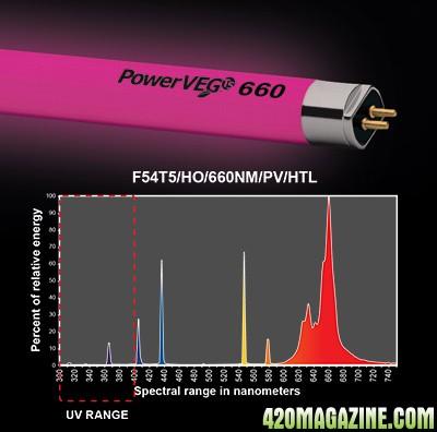 power-veg-660.jpg