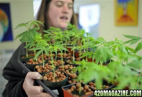 420-girl-miss-meadow.JPG