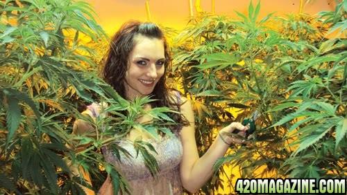 Cannabis_Girl3.jpg