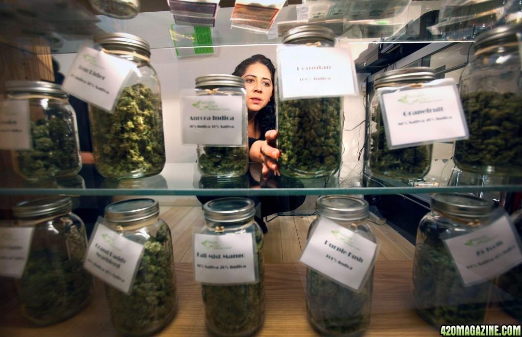 Как купить марихуану в риме семена конопля строение