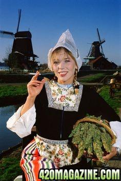 cannabis_in_Holland1.jpg