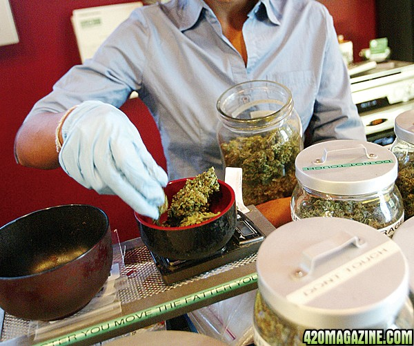 cannabis_tech1.jpg