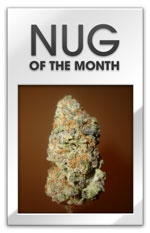 Nug of the Month