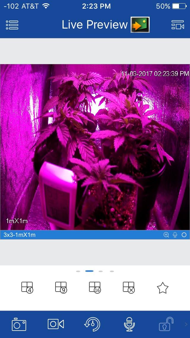 420-magazine-mobile1579128683.jpg