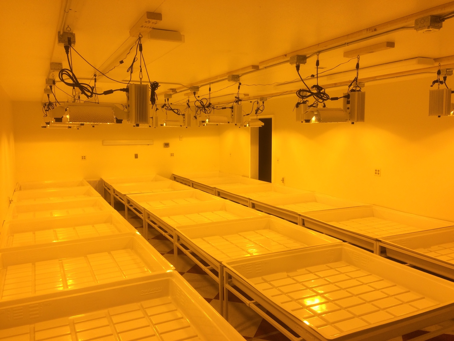 commercial grow room build out just waiting on license pics. Black Bedroom Furniture Sets. Home Design Ideas