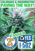 Colorado Washington Legalized Marijuana 2012
