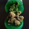 medical-marijuana-medicine-bottle