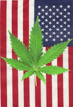US Flag-Cannabis