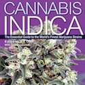 Cannabis Indica Volume 3D
