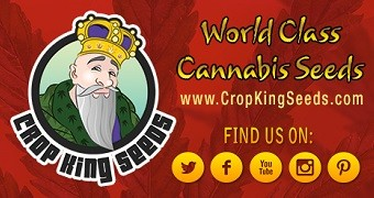 Crop King Seeds: Sponsor Of The Month