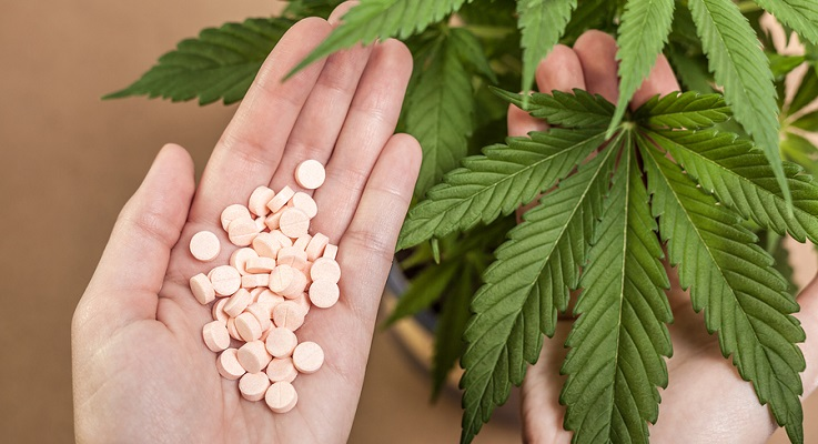 Detail of Cannabis plant and hand with pharmaceuticals.