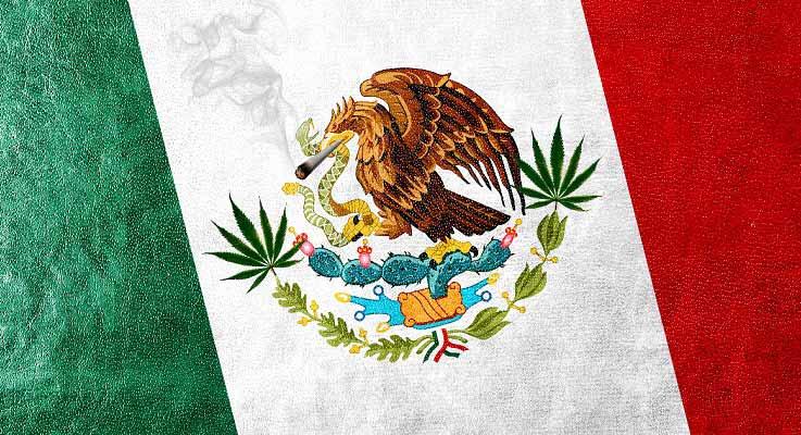 mexican-marijuana1