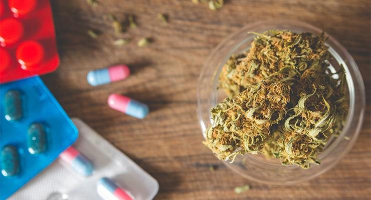 Pot Vs. Pills - Can Marijuana Help Cure The Opiate Crisis-min