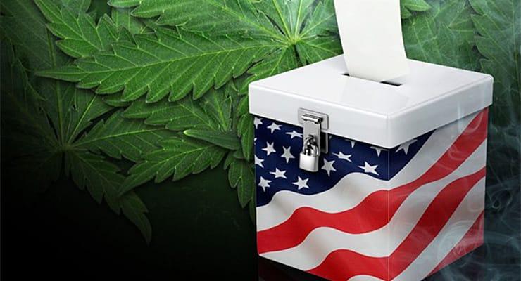 marijuana+vote+(redesign)-min