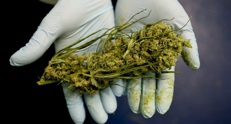 420-To-Enrich-Big-Pharma-FDA-And-DEA-Deny-Science-On-Medical-Marijuana-min