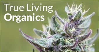 True Living Organics – A Review By Doc Bud