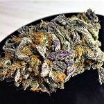 420 Magazine's Nug Of The Month – August 2017