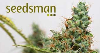 Sponsor Of The Month – Seedsman