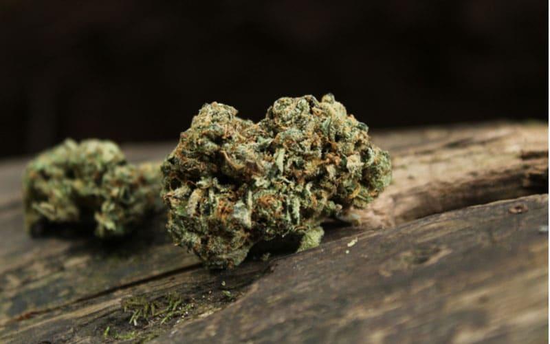 Исландия и марихуана фуросемид и тест на марихуану